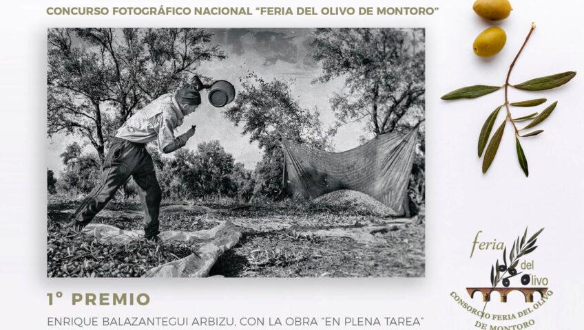 premios fotografía FERIA DEL OLIVO1º